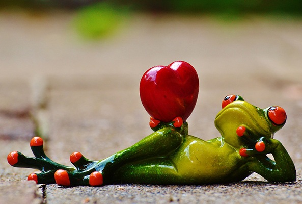 figure of a frog holding a heart demonstrates that heart rate is key to a good workout
